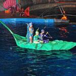 La Feuille sur l'eau pendant le Spectacle le soir - Marineland