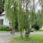 Viel Platz zum Toben auf dem Ferien Hendlmühle