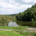 Angeln im hauseigenen Teich