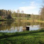 Ideale Bedingungen für Angelurlaub im Oberpfälzer Wald