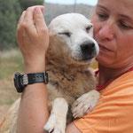 7988 Hope/Frieda - abandonado enfermo y ciego05/2014, se a muerto en agosto 2014
