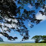 2011: Hawai
