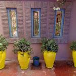 2008: Marokko Farbenspiel im jardin majorelle (Marrakesch)