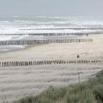 2013: Holland, Strandspaziergang