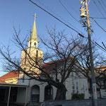 朝7時過ぎ。明るい朝の光が教会堂を照らし始めています。