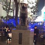 渋谷まで、静岡から高速バスで参りました。バスターミナルの前にありました。
