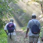 Besuch im Sinharaja Regenwald