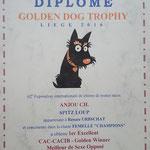 Liege Lüttich Belgien Hundeausstellung Wolfsspitze von der Römerroute 2016