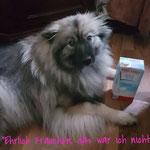 Wolfsspitz Hündin INARA von der Römerroute DER MILCHDIEB