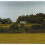 ZEICHEN, im Bruch Libbenichen, 1988, Holz, Kalk