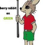 ゴルフウェア ウサギ