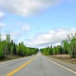 Alaska - Endlose Straßen durch traumhafte Landschaften