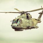 Merlin der 814 NAS (GBR)