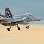 Hornet im Landeanflug