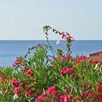Das farbenfrohe Tor in die Weiten des Mittelmeeres
