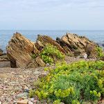 Porto Corallo -  Viele Felsen, aber auch ein Sandstrand befindet sich direkt vor Ort.