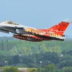 "...ebenso die Rafale mit dem Namen ""Thunder Tiger"" - 20.06.2014"