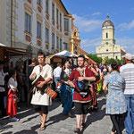 Events in Neuburg an der Donau - Schloßfest in der Altstadt
