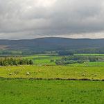 Typische Landschaft Schottlands