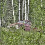 In den Bergen von Fairbanks - Erinnert irgendwie an diverse Horrorfilme