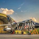 """Tornado des AG 51 """"I"""" - Damit gewann man den diesjährigen """"Silver Tiger"""" für die schönste Lackierung beim Tiger Meet"""