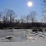 Februar - Eiskalter Wintermorgen im Donau - Auenzentrum bei Neuburg an der Donau