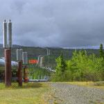Richardson Highway - Aussichtspunkt auf die Alaska Pipeline