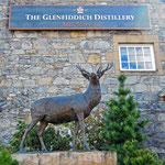 Glennfiddich Distillery - Zur Führung gehört auch eine Verkostung der verschiedenen Whiskysorten.