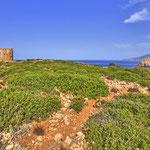 Ostküste - Cala Domestica/Piratenbucht - Tyischer Turm oben auf dem Fels. Weiter vorn an den Klippen glich das Gebiet einer Mondlandschaft.