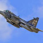 "Gripen ""Tigerheads"" - 211 Sqn (CZE)"