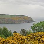 Steilküste am Moray Firth