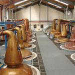 Die Brennblasen der Glennfiddich Distillery. Der Rundgang ist sehr empfehlenswert obwohl hier alles auf Tourismus ausgerichtet ist.