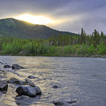 Abends am Nenana-River, südlich des Park Eingangs. // Evening at the Nenana River, south of the park entrance.