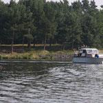 vom Niegripper See kommend in den Elbe-Havel-Kanal