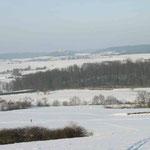 Blick vom Langenselbolder Weinberg über schneebedecktes Land auf die Ronneburg.