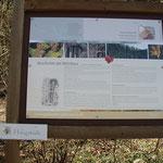 Kleine attraktive Rundwanderung über Winzerhütte