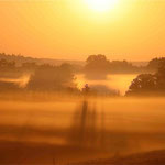 Brume matinale en campagne © Gérard Houdou