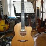 アコースティックギター Lowden ステール弦 ギター