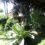 Puerto Princesa - Garten der Unterkunft - Palawan Island