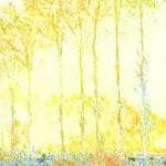 Claude Monet - Pioppi sulla riva del fiume Epte - 1891 - Olio su tela