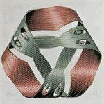 Moebius band I