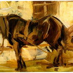 Piccolo cavallo-studio-
