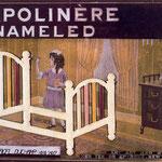 Apolinère Enameled
