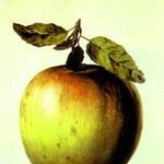 Questa non è una mela - 1964 - olio su tavola