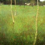 Agriturismo con alberi di betulla - 1900