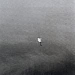 Cygne suisse, Vevey, 1974