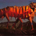 Maggio - Il Dragone - Fortuna