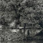 Iles de Champigny, depuis La Varenne, 1956