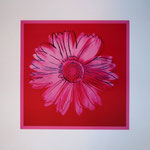 Daisy Crimson & Pink, 1982