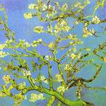 Mandorlo in fiore - Saint-Remy - Febbraio 1890. Olio su tela
